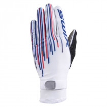 Swix Competitionx Gws Glove Mens Norwegian Mix