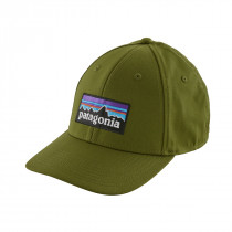 Patagonia P-6 Logo Stretch Fit Hat Sprouted Green