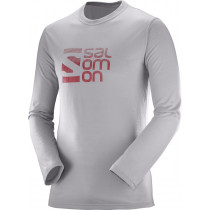 Salomon Pulse LS Tech Tee M Alloy