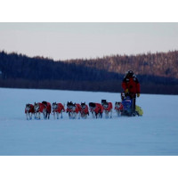 Non-Stop Dogwear Long Distance Jacket Noflap Red