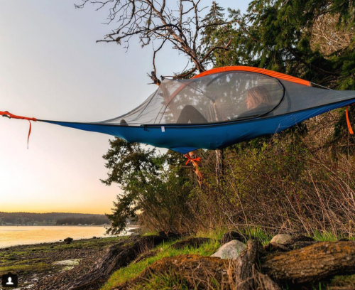 Tentsile Flite+ 2 Forest Green