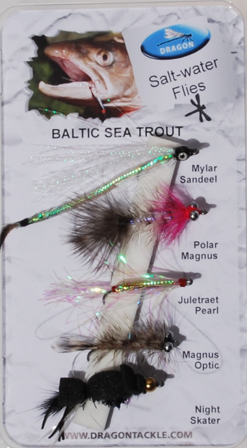 Dragon Baltic Sea Trout
