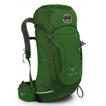 Osprey Kestrel 28 Jungle Green