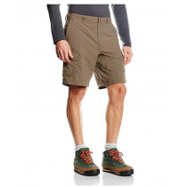 The North Face Men's Horizon Peak Cargo Shorts Weimaraner Brown