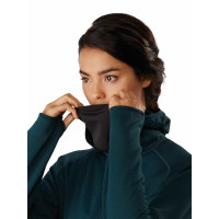 Arc'teryx Delta MX Hoody Women's Labyrinth