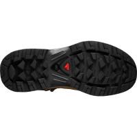 Salomon Shoes Quest 4d 3 Gtx® Women's Teak/Teak/Tibetan Red