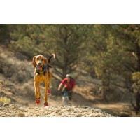 Ruffwear Grip Trex  Boot Pairs potesokk Red Currant