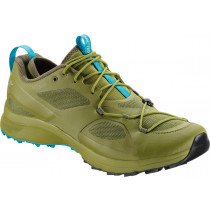 Arc'teryx Norvan Vt GTX Shoe Men's Carmanah/Hydra Blue