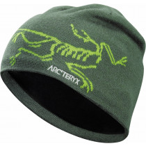 Arc'teryx Bird Head Toque Shorepine/Titanite