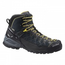 Salewa Mens Alp Trainer Mid Gtx Carbon/Ringlo