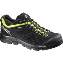 Salomon X Alp Ltr Gtx Black/Gecko Green/Alu