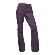 The North Face W Anonym Pant Dark Eggplant Purple